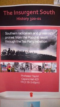 southern insurgents