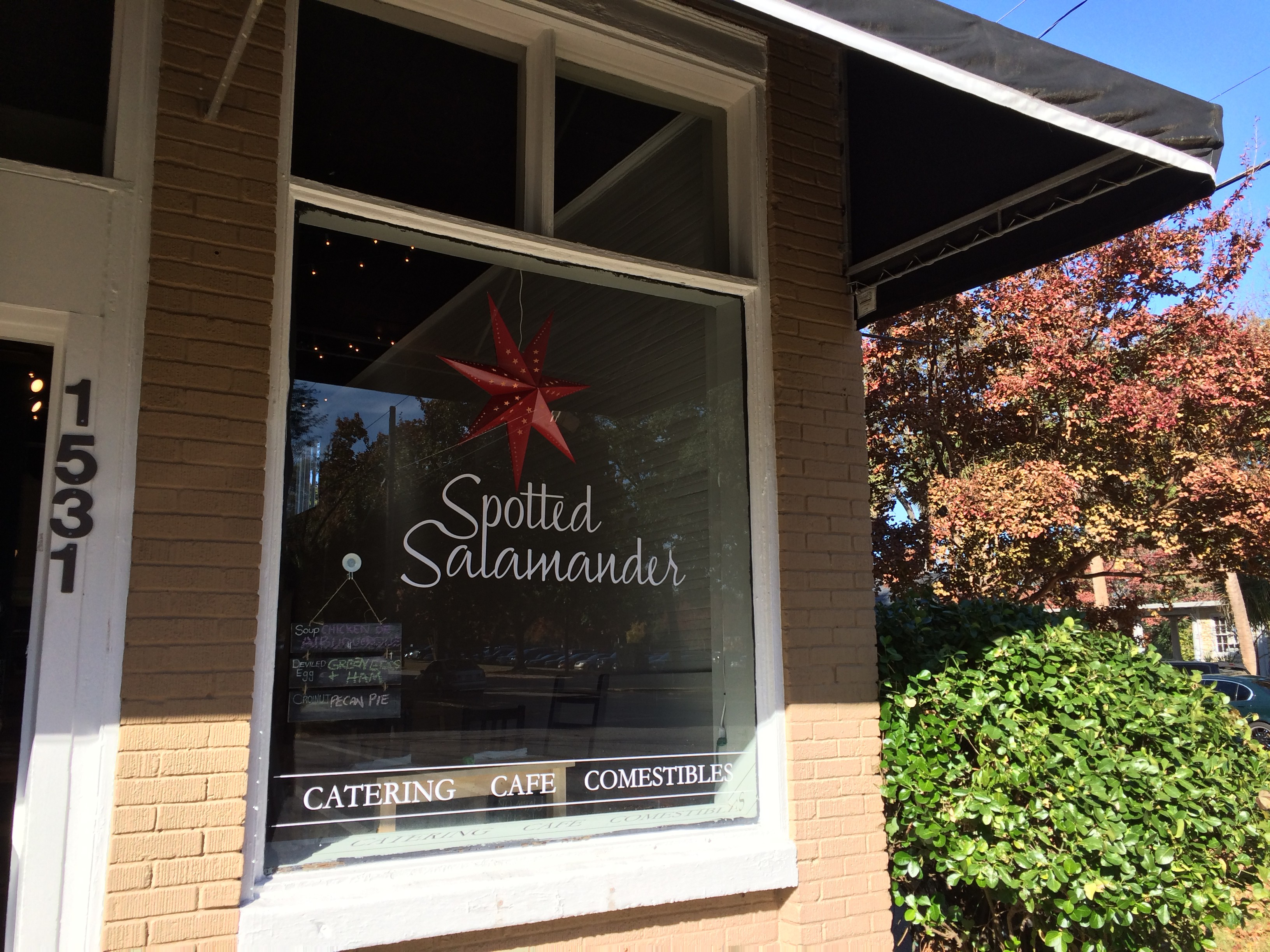 New Restaurant Alert Spotted Salamander Cafe In Downtown