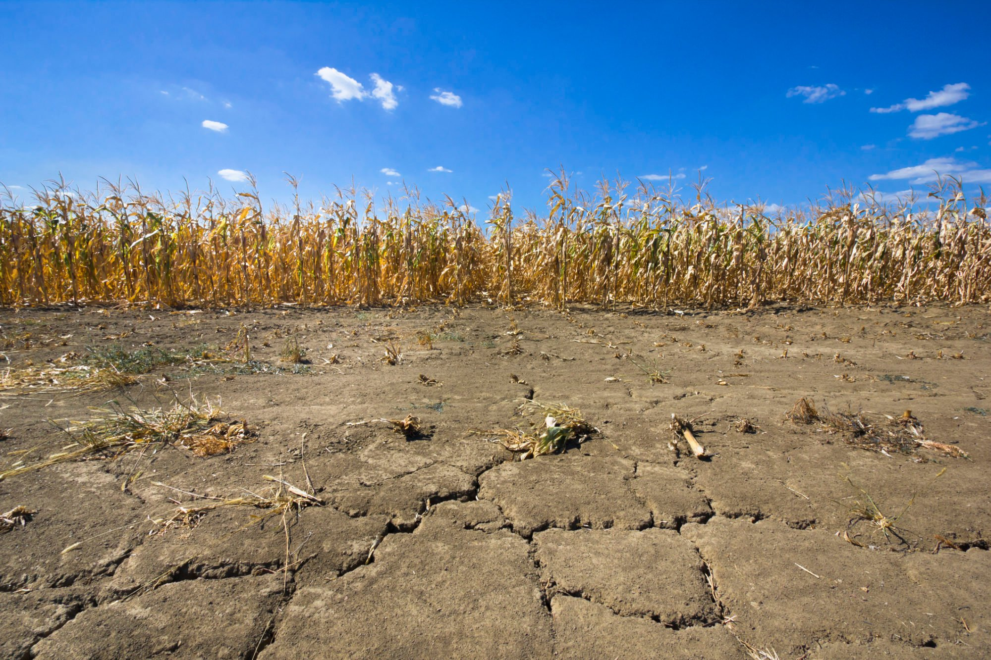 FITSNews – Drought Conditions Creeping Across South Carolina